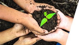 Eko sistem podrzava proces reciklaze i ocuvanja zivotne sredine